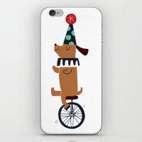 circus dog iPhone & iPod Skin