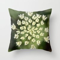 queen lace flowering head. floral garden plant photography. Throw Pillow