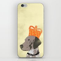 German Shorthaired Pointer Dog iPhone & iPod Skin