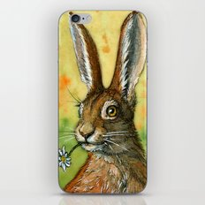 Funny Rabbits - One daisy for you 488 iPhone & iPod Skin