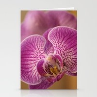 Pink Orchid Flowers Stationery Cards