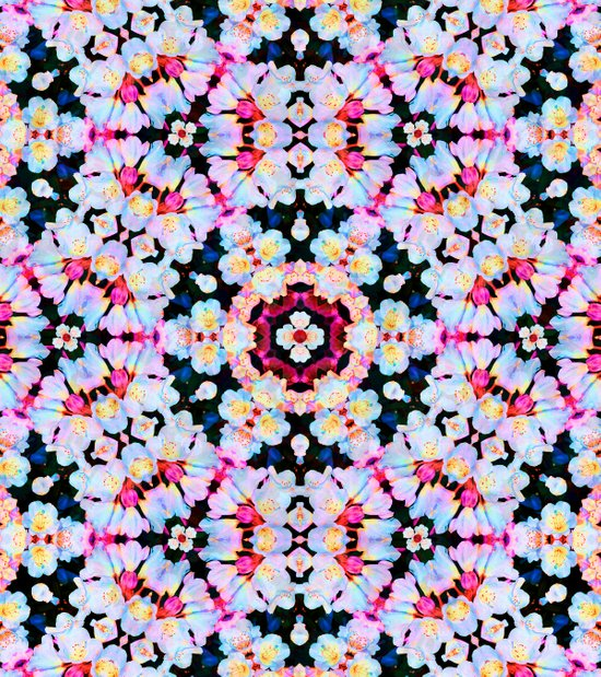 Kaleidoscope Flowers  Art Print