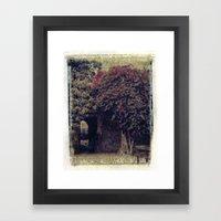 Mission Bougainvillea Framed Art Print