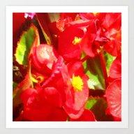 Amazing Garden Flowers 0… Art Print