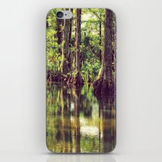 The River of Grass iPhone & iPod Skin