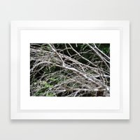 A Withered Hold Framed Art Print