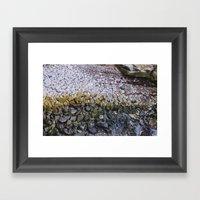 La Jolla Rocks Framed Art Print