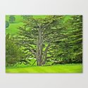 Old English Tree 1 Canvas Print