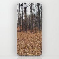 Indiana Forest iPhone & iPod Skin