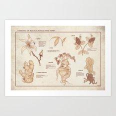 Herbology Reference Chart (Hogwarts) Art Print