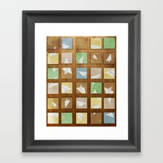 Hidden Plane Framed Art Print