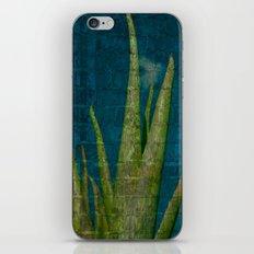 Aloe  iPhone & iPod Skin