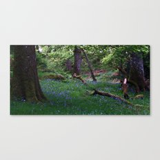 Ashness Wood Canvas Print
