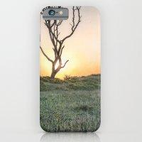 Barrier Island Sunrise II iPhone 6 Slim Case