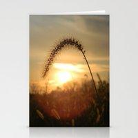 Field Grass Sunrise Stationery Cards