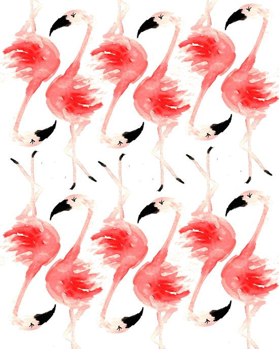 Flamingos! Canvas Print