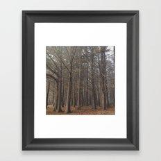 ww Framed Art Print