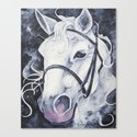 Pale White Horse Canvas Print