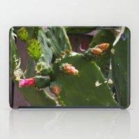 Summer Cactus In Flower iPad Case