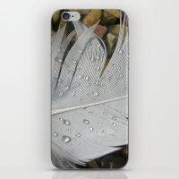 feather macro XIII iPhone & iPod Skin