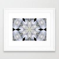 White Arctic Queen Kalei… Framed Art Print
