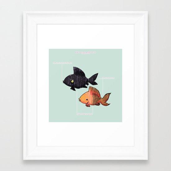 Anatomy Of A Goldfish Framed Art Print