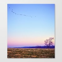 Single File Canvas Print