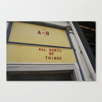 all sorts of things Canvas Print