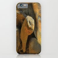iPhone & iPod Case featuring This Old Guy by Deborah Benoit