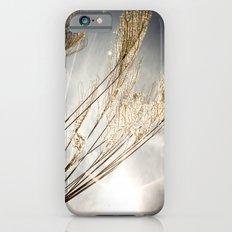 sunlight in the field iPhone 6 Slim Case