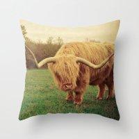 Scottish Highland Steer … Throw Pillow