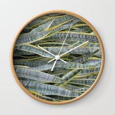 Snake Plants Wall Clock