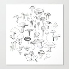 The mushroom gang Canvas Print