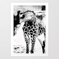 Black n White Giraffe Art Print