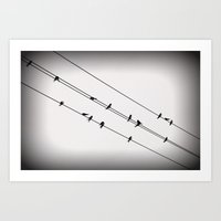 Birds On A Wire Art Print
