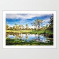 Country Pond Art Print