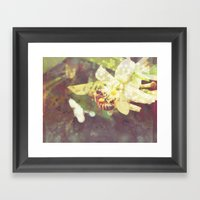 Honey Bee: Pearl Framed Art Print