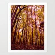 Autumn Day VI Art Print