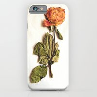 iPhone & iPod Case featuring Rose by @lauritadas