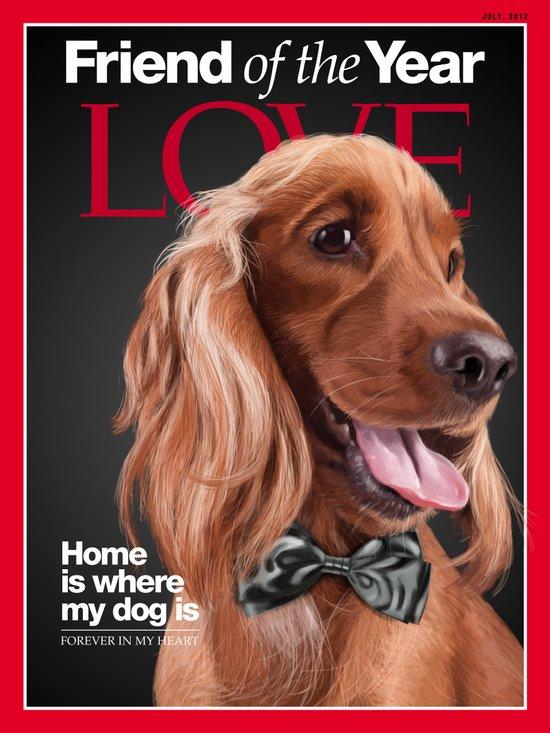 Portrait of an elegant English Cocker Spaniel on a Time Magazine cover Canvas Print