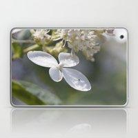 4 petal flower Laptop & iPad Skin