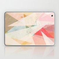 Vantage Point Laptop & iPad Skin