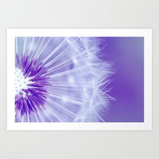 Purple Dandelion Art Print