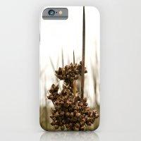 Sharp Rush iPhone 6 Slim Case