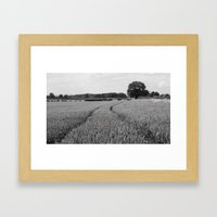 Summer Fields #7 Framed Art Print