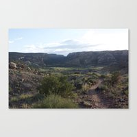 Evening Trail Canvas Print