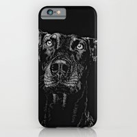 iPhone & iPod Case featuring The Curious Expressions of Dogs by Nathan Cole