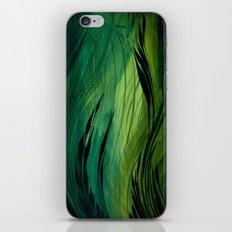Ravine iPhone & iPod Skin