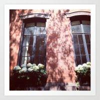 Brownstone + Hydrangeas Art Print