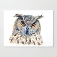 Eage Owl CC1404 Canvas Print